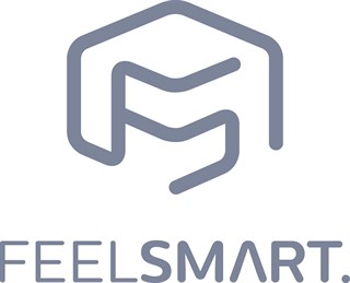 Logo FEELSMART